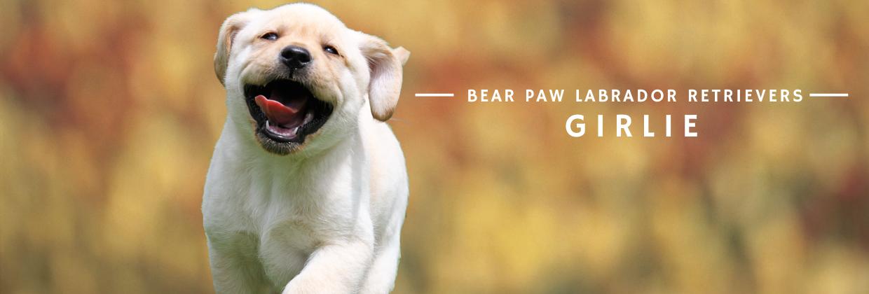 Bear Paw - Girlie